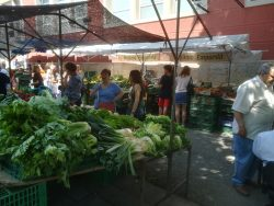 Girona market