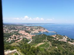 Collioure, view from Fort St, Elme