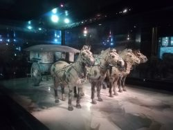 Chariot & exhibition at the Terracotta exhibition