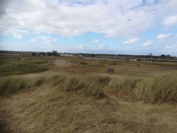 Nature reserve at Walberswick